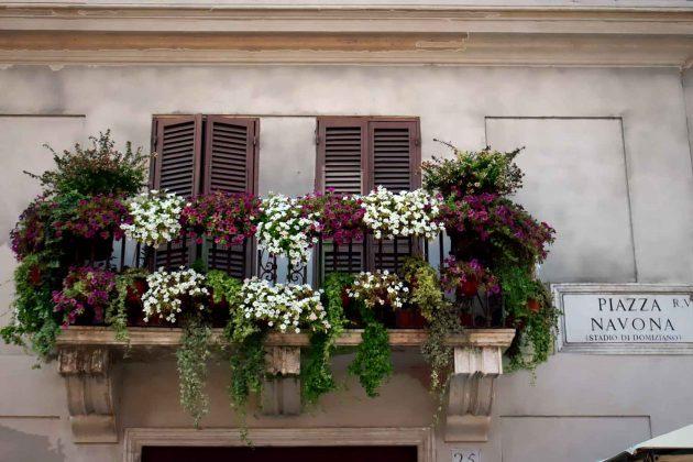Foto Balkon Gebäude in Rom Italien mit bunten Blumen auf dem Navona Platz