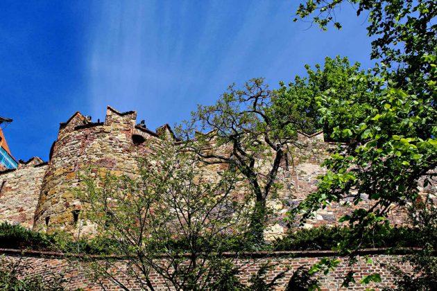 Foto Burg in Prag unter blauem Himmel, Vordergrund grüne Blätter