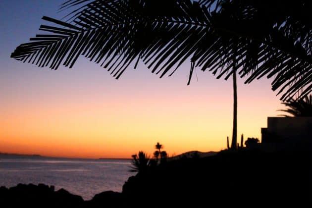 Foto Sonnenuntergang mit Palmen am Meer auf Lanzarote orange blau dunkel